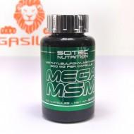 Mega MSM 100 капс