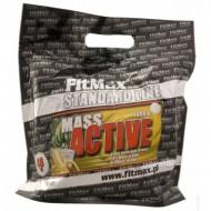 Mass Active 1000 грамм