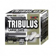 Tribulus Large Caps 300 капс