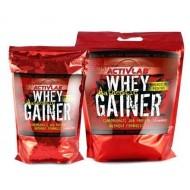 Whey Gainer Authentic 1000 грамм