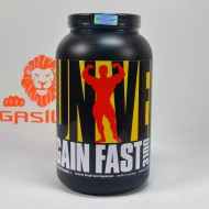 Gain Fast 3100 2300 грамм